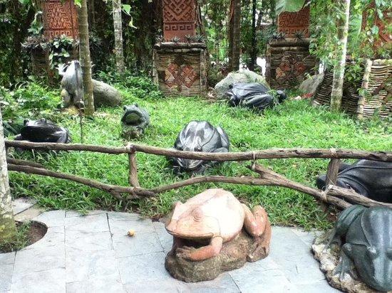 Areca Valley Tourist Resort of Hainan Ganza Ridge Primitive Culture: le rane