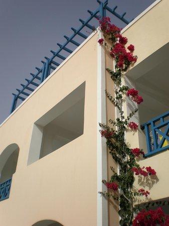 سانتيليني هوتل: First floor room with view over pool