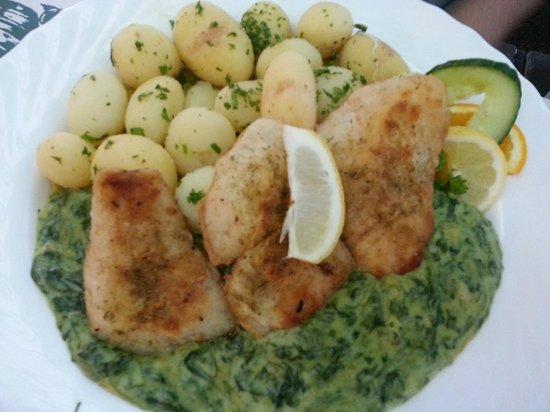 Balaton Etterem: zander filets