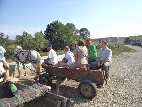 Medias, Romania: day trip