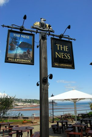 The Ness: Sign