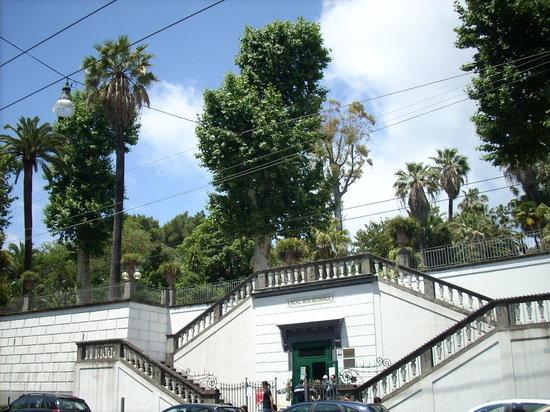 Orto Botanico di Napoli