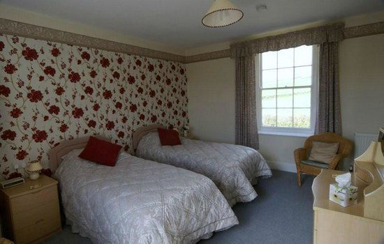 Lower Pinn Farm: King size double or twin ensuite room