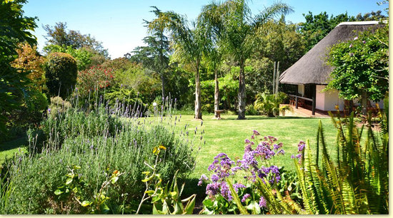 AFRICA-LODGE Guesthouse: Garden