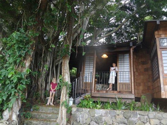 Hale Maluhia Country Inn : Tea House Suite - Outside View