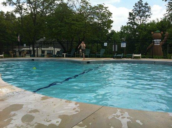 Yogi Bear's Jellystone Park: Great Pool Fun