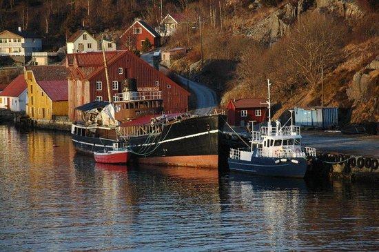 Tromso Fjords: Kristensand