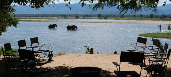 Goliath Safaris Luxury Tented Camp : They too are enjoying their 'watering' hole
