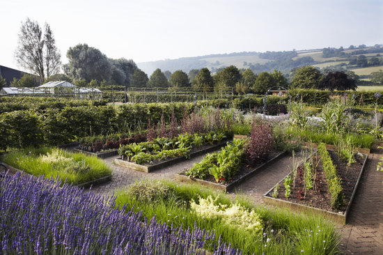Yeo Valley Organic Garden: getlstd_property_photo