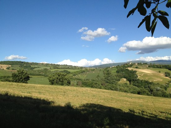 Agriturismo Casale dei Frontini: Panorama circostante