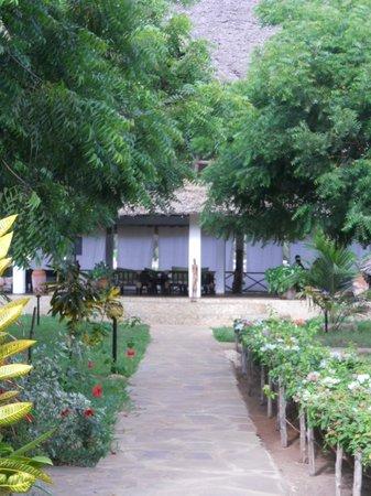hotel Eco Lodge Jua Bahari: il villaggio