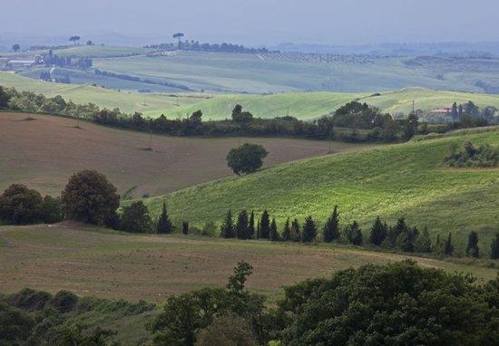 Fattoria del Colle - Agriturismo: The View from Fattoria del Colle