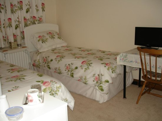 Amarisa Bed & Breakfast: English Rose Twin Room Downstairs