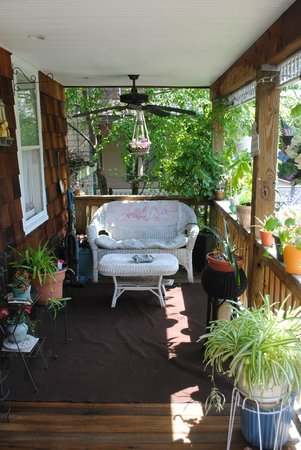 Highland House: This is the pawsome view of their front porch-