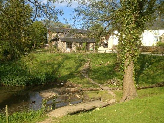 North Hayne Farm Cottages