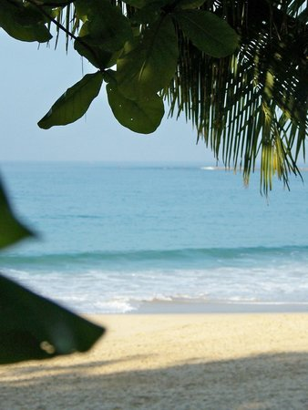 Bayview - The Beach Resort: Vue de notre terrasse