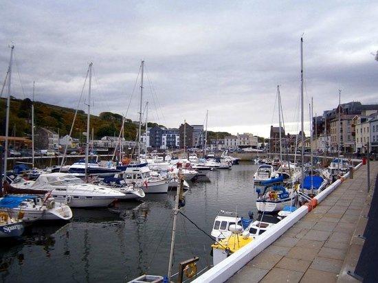 The marina, view from v near The Velvet Lobster