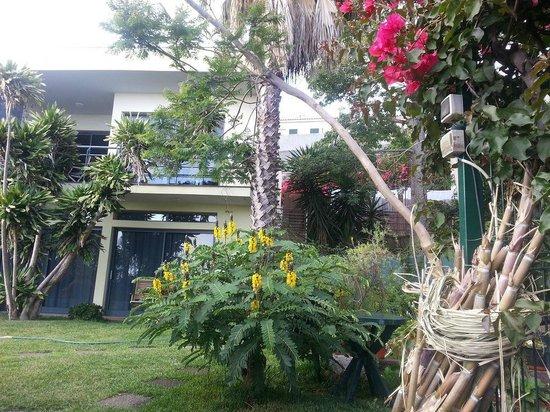Casa do Papagaio: belle vue sur petite partie du jardin