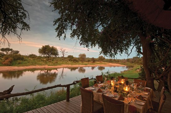 Image result for Motswari Private Game Reserve