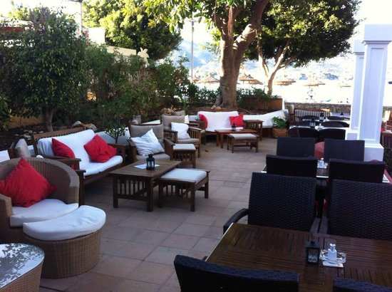 Zen Lounge Bar and Grill : Chill out and lounge!