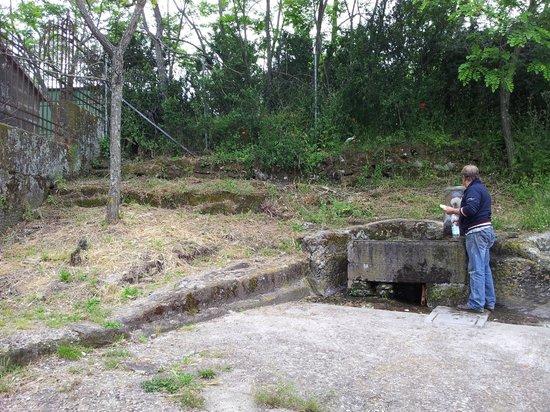 La Chiesuola: La fontana...di riferimento