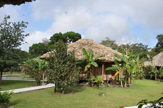 La Milpa Field Station: cabana