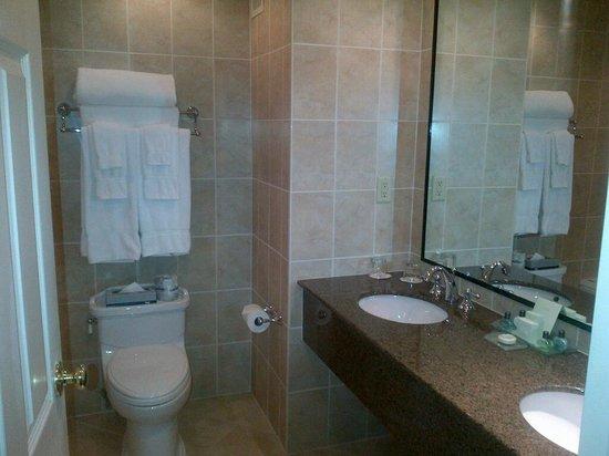 كوينز لاندينج: Bathroom in the standard room