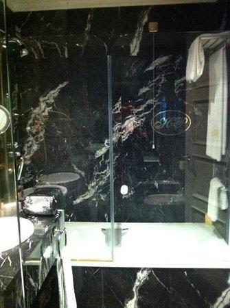 Hotel Alameda Palace: enclosed bath shower