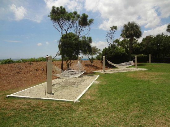 Marriott's Monarch at Sea Pines: Hammocks near the beach