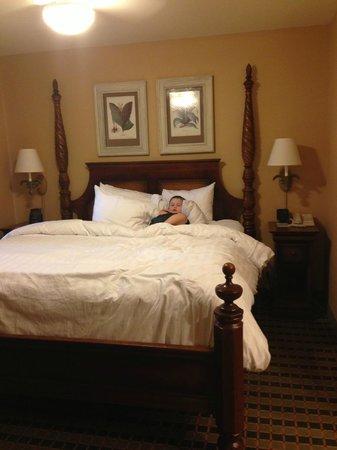 Homewood Suites Pensacola-Arpt (Cordova Mall Area): Big comfy bed
