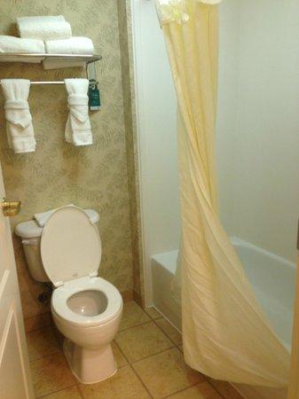 Homewood Suites Pensacola-Arpt (Cordova Mall Area) : standard bathroom