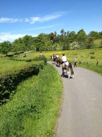 Strandhill Lodge and Suites Hotel: Horse Riding