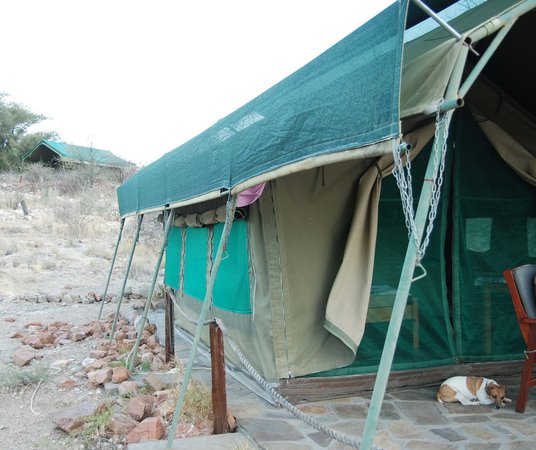 Etusis Lodge: our tent with Paul the dog