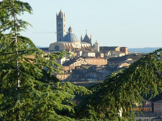 Villa Scacciapensieri : View from room