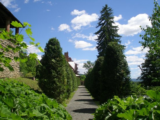 Naumkeag: The Evergreen Garden