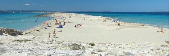 Playa de Ses Illetes: La spiaggia