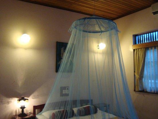 Modern City Inn: anti-mosquito