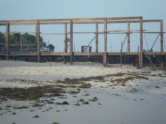 El Dorado Royale, by Karisma: construction and seaweed