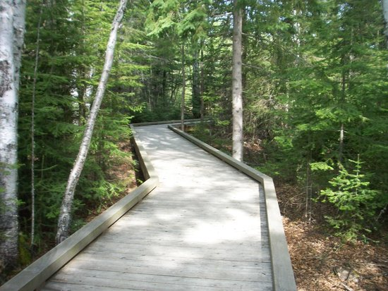 Grand Portage State Park: path