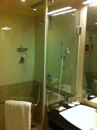 Royalton Hotel: Shower area