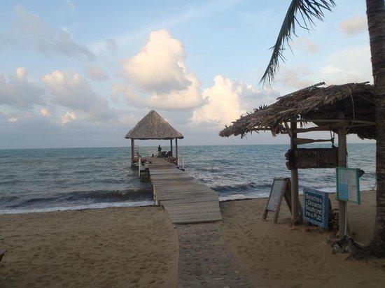 Caribbean Shores Bed & Breakfast照片