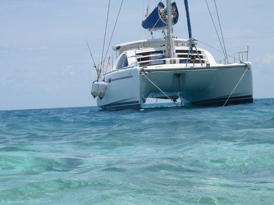 Caribbean Shores Bed & Breakfast: catamaran
