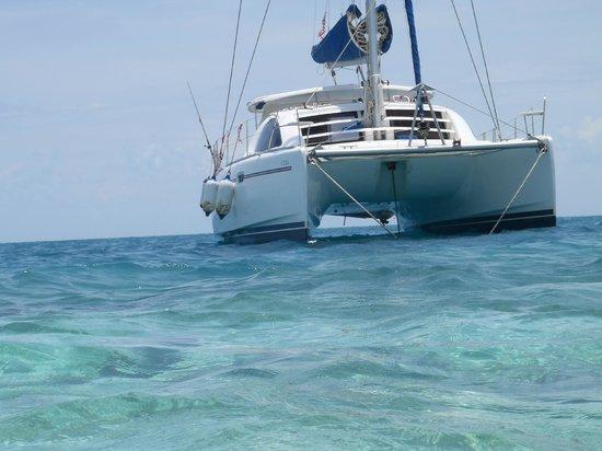 Caribbean Shores Bed & Breakfast: catamaran