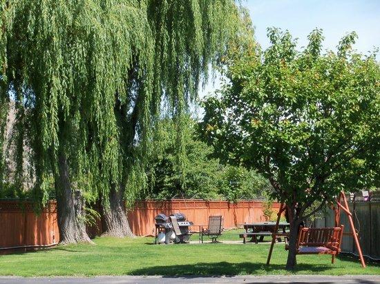 Lakeside Villa Inn & Suites: backyard