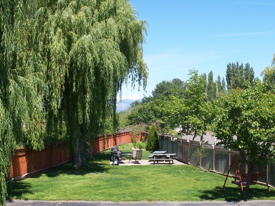 Lakeside Villa Inn & Suites: back yard from balcony