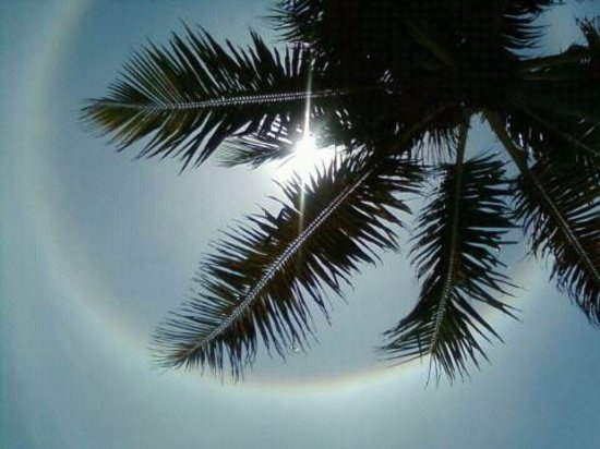 Postcard Inn Beach Resort & Marina: This is a Sun Dog, where sunlight reflects off of the water crystals in the atmosphere.