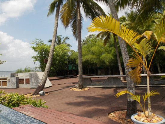 The Park on Vembanad Lake: poolside