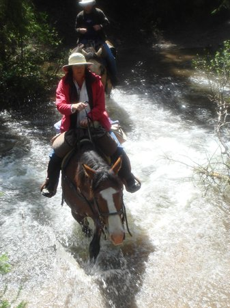 Hell's A-Roarin' Outfitters: Good times by horseback!