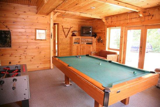 Sleeping Bear Resort: Bear's Den Rec Room