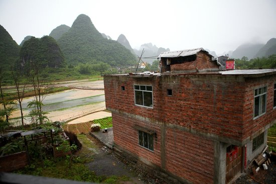 Yangshuo Tea Cozy: View of the rice fields next door